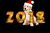 Новый год 2018 в Аристотеле