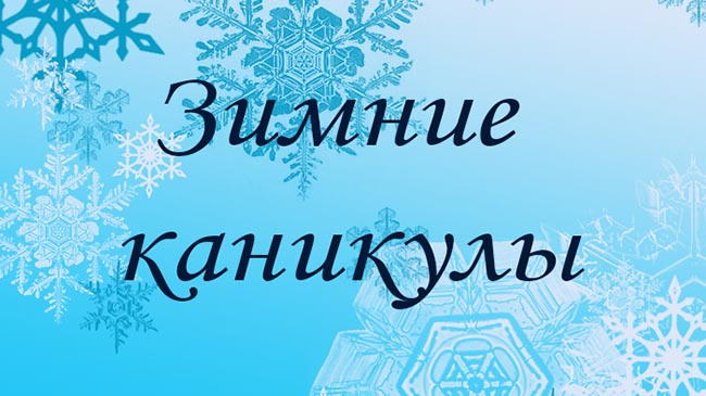 Зимние каникулы в «Аристотеле»!